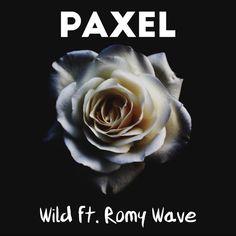 Romy Wave