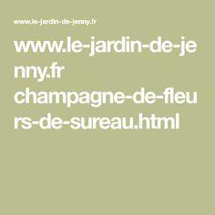 Jenny Dey