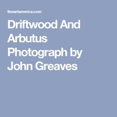 John Greaves