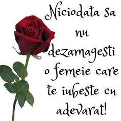 Teo Trandafir